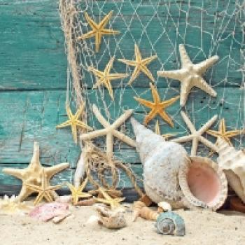 Serviette Starfish